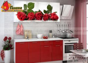 Кухонный Гарнитур Ф-58