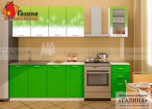 Кухонный Гарнитур Ф-67